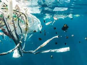 Contaminacion oceanica